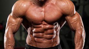 ripped muscle 300x166 - Лигандрол / Ligandrol 60 капсули / 10мг